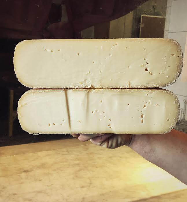 Rex Cheese - 1/2 Pound