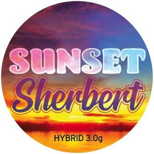 Legal Coupon - (Sunset Sherbet) Optional Gift