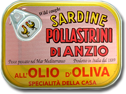 sardine all olio d'oliva