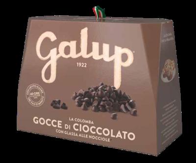 Colomba cioccolato - Galup