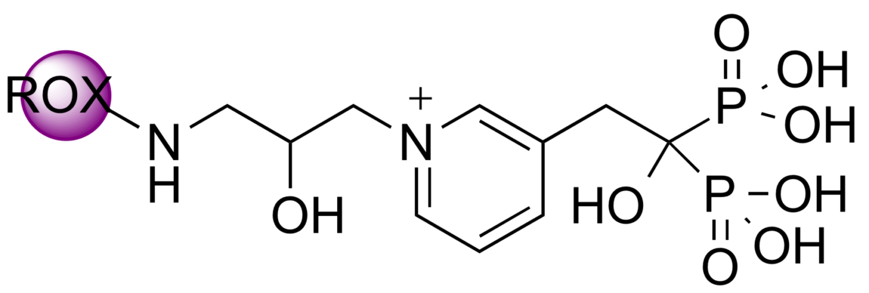 5(6)-ROX-RIS