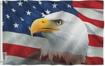Flags 3X5 Specialty USA Eagle