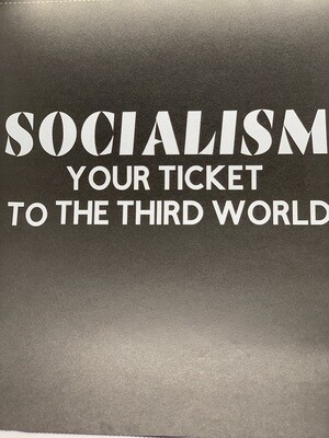 AP Socialism Ticket Decal