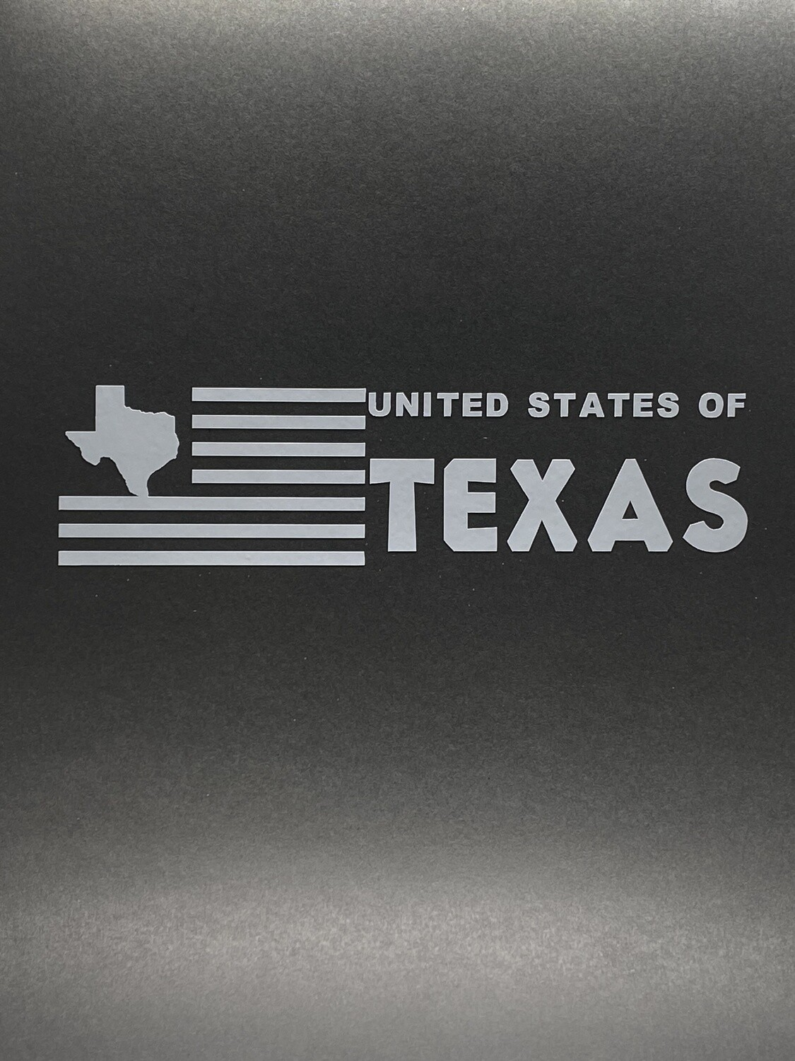 AP US of Texas Decal