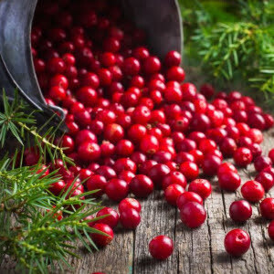 Cranberry [Canneberge] Frucht-Balsamico