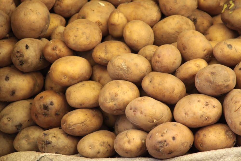 Groenten: Oosthof 10kg aardappelen