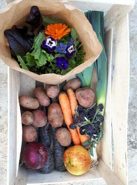 Groenten: Monde des Mille Couleurs groentenpakket