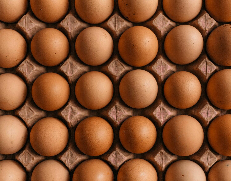 Ei: Oosthof 6 eieren