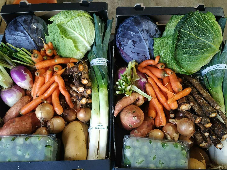Groenten: Oosthof pakket 2kg prei, 1kg wortelen, 1kg ajuin, 1 rode kool en 0.5kg spruitjes