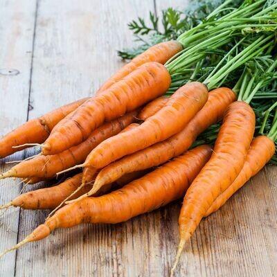 Groenten: Oosthof 1 kg wortelen