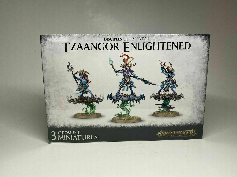 Disciples Of Tzeentch Tzaangor Enlightened