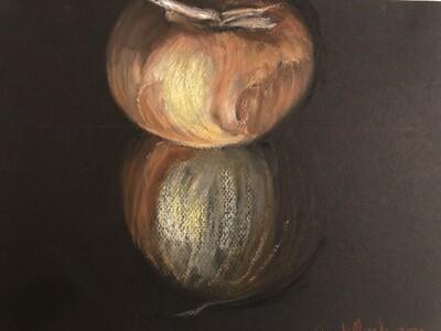 "z""Allium Cepa""  Soft Oil Pastel on Canson Paper 12X9inch"