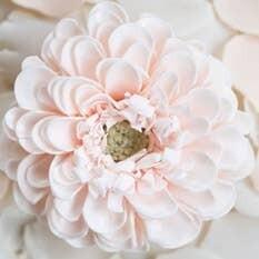 A'marie's Bath Flower Shop - First Love