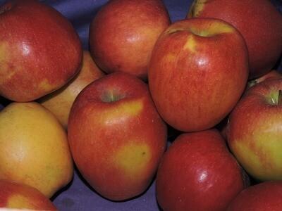 Äpfel Braeburn 1kg
