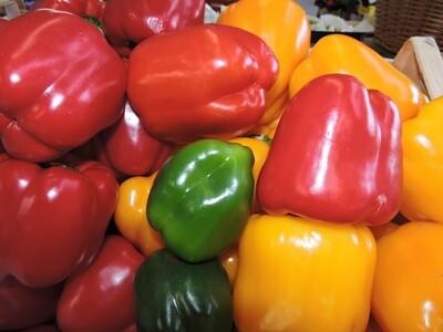 Paprika, 1 Stk (gelb)