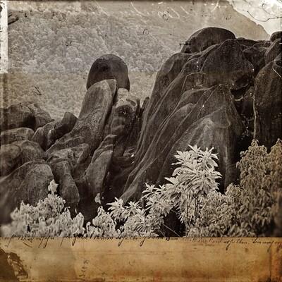 Forest granit 50 x 50 cm