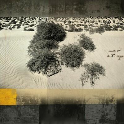Dunes Fuerte 50 x 50 cm