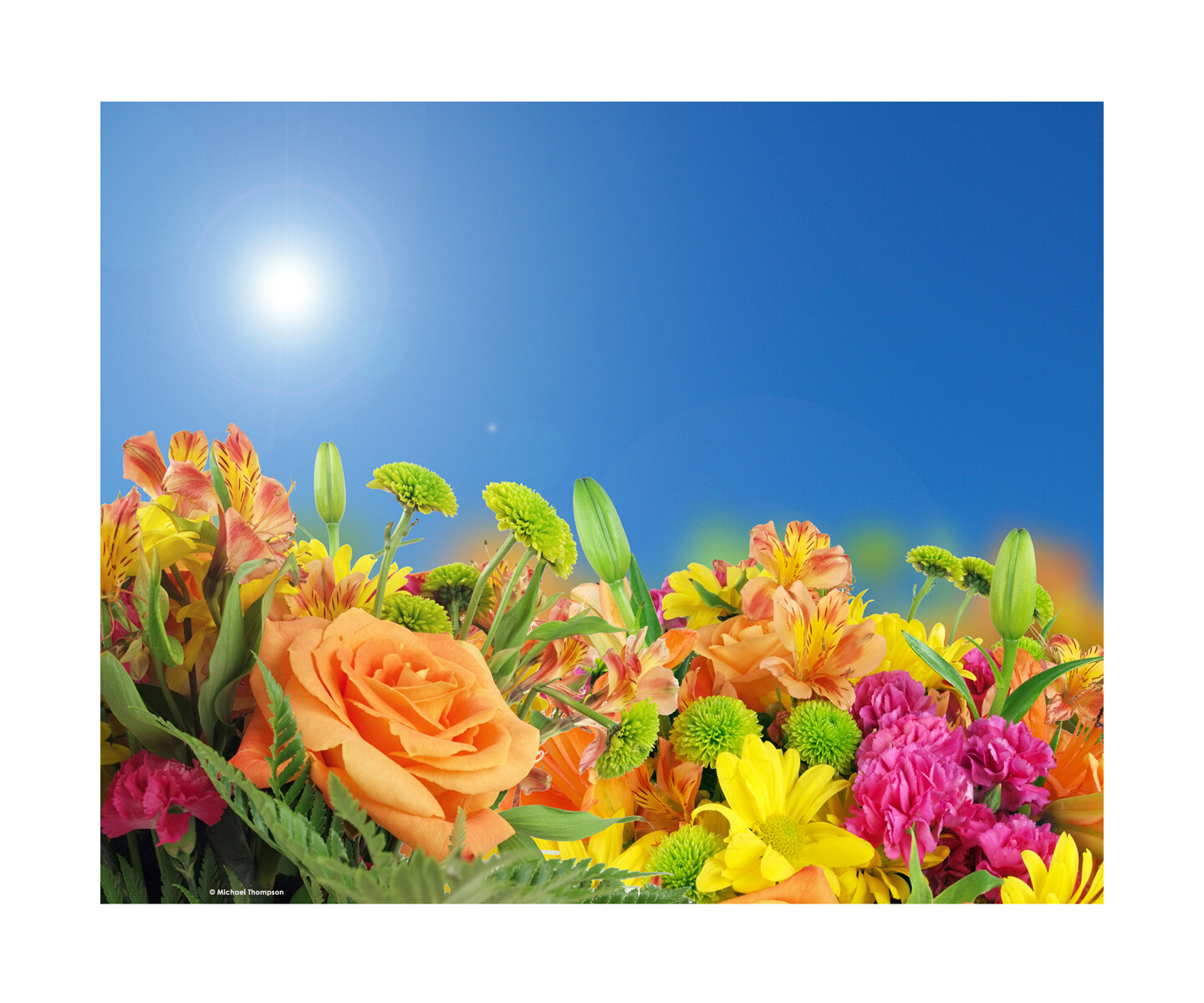 Flowers and Blue Sky