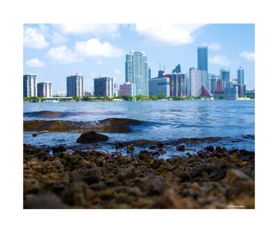 Across The Banks of Downtown Miami
