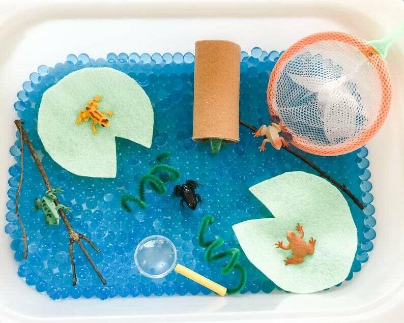 Frog Sensory Kit