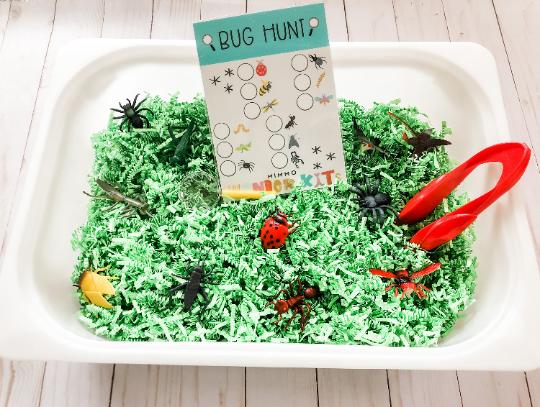 Bug Hunt  Sensory Kit