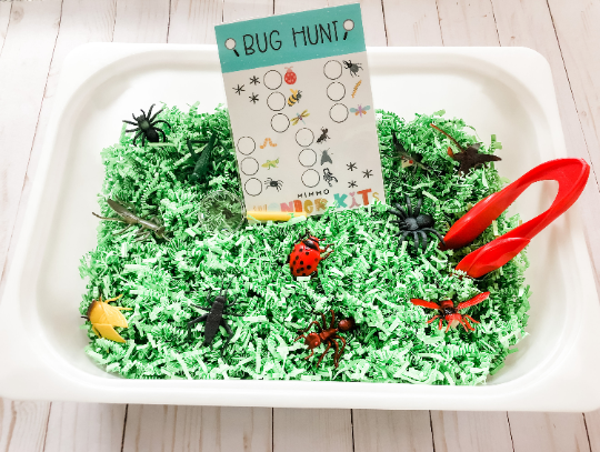 Bug Hunt  Sensory Kit