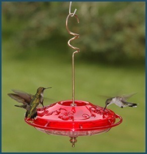 12 ounce Fancy Humzinger Hummingbird Feeder