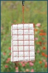 Hummer Helper Nesting Material & Cage