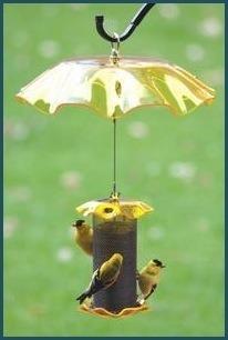 Weather Guard Yellow