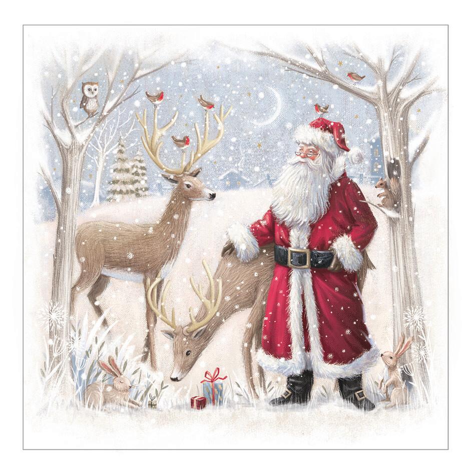 Woodland Santa (10 pack)