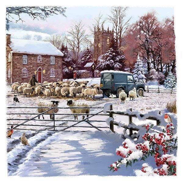 Farmyard Sheep x 10