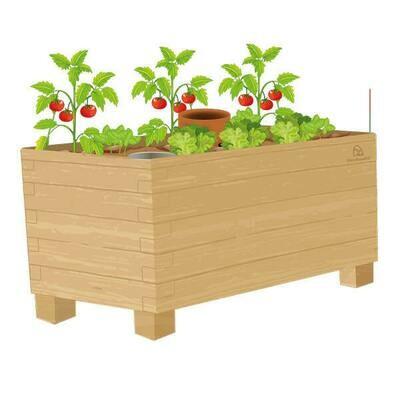 BAC POTAGER - Kit prêt-à-planter
