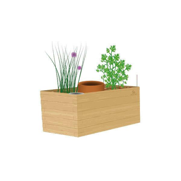 JARDINETTE - Kit prêt-à-planter