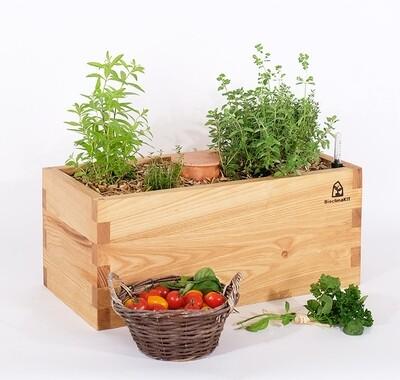 JARDINIÈRE - Kit prêt-à-planter