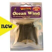 WILD BERRY OCEAN WIND BACKFLOW CONES
