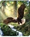 EAGLE'S FLIGHT FAUX FUR