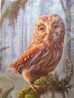 3D NON FRAMED DEEP OWL 581