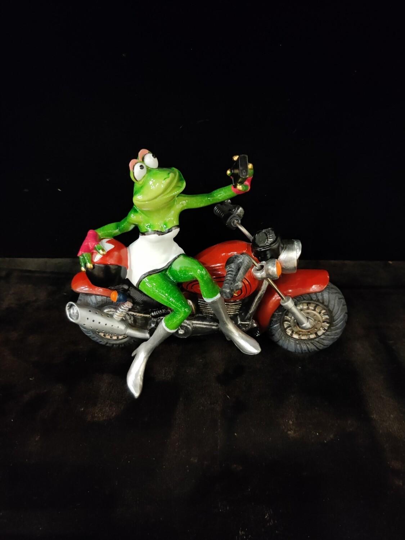 FROG ON MOTORCYCLE SELFIE
