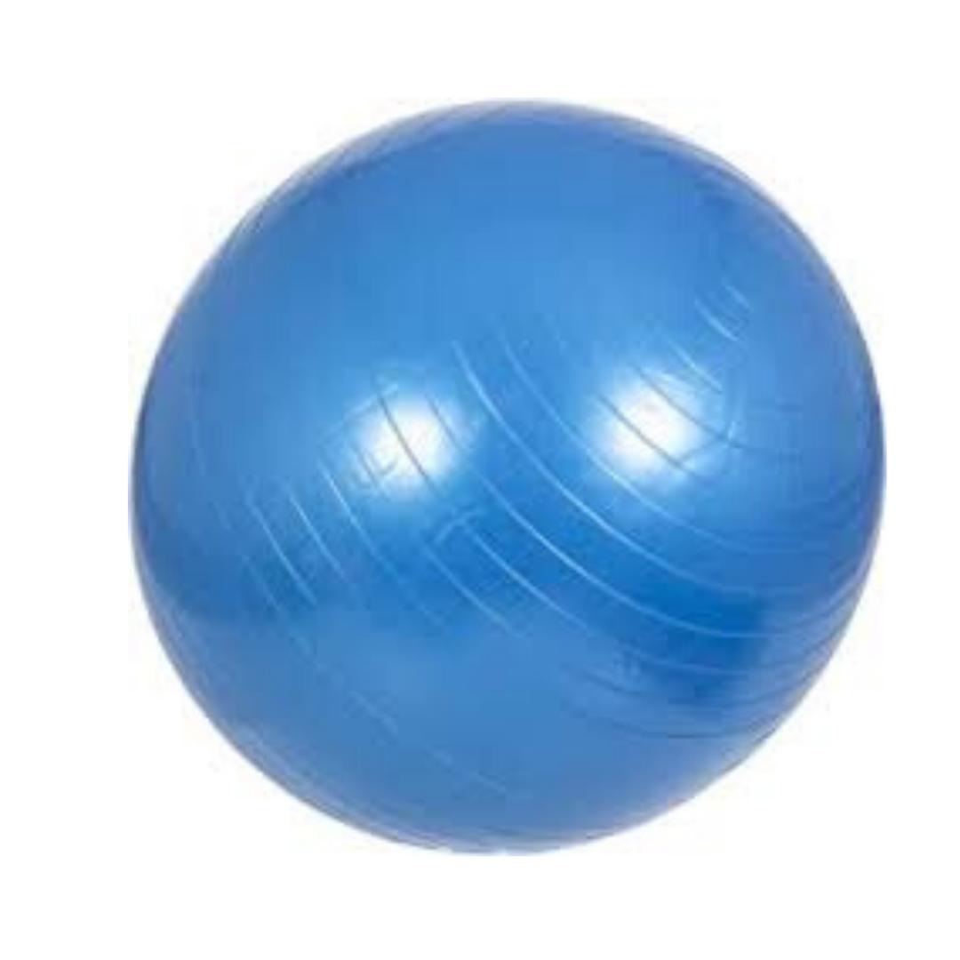 GYM BALL EVERLAST / 65 CM
