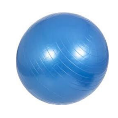 GYM BALL EVERLAST / 55 CM
