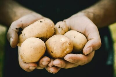Potatoes (Locally Grown)