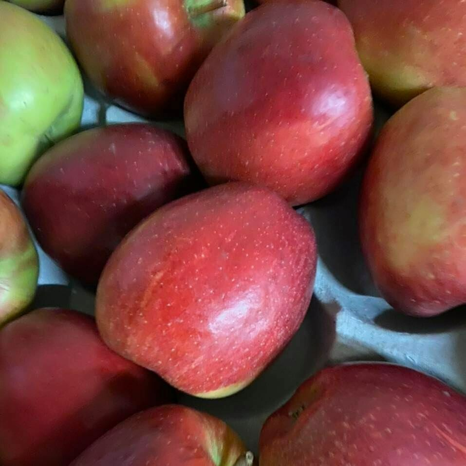 Apples - Braeburn (New Zealand)