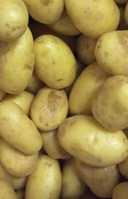 Potatoes Washed New Potatoes/ Salad Potatoes