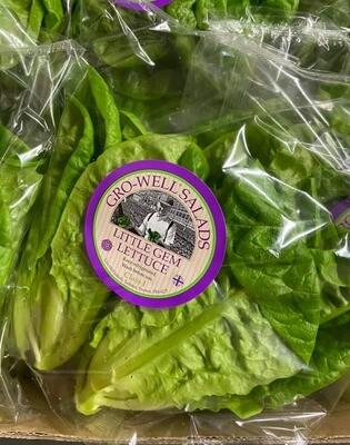 Lettuce Gem - Pack of 2 (UK)