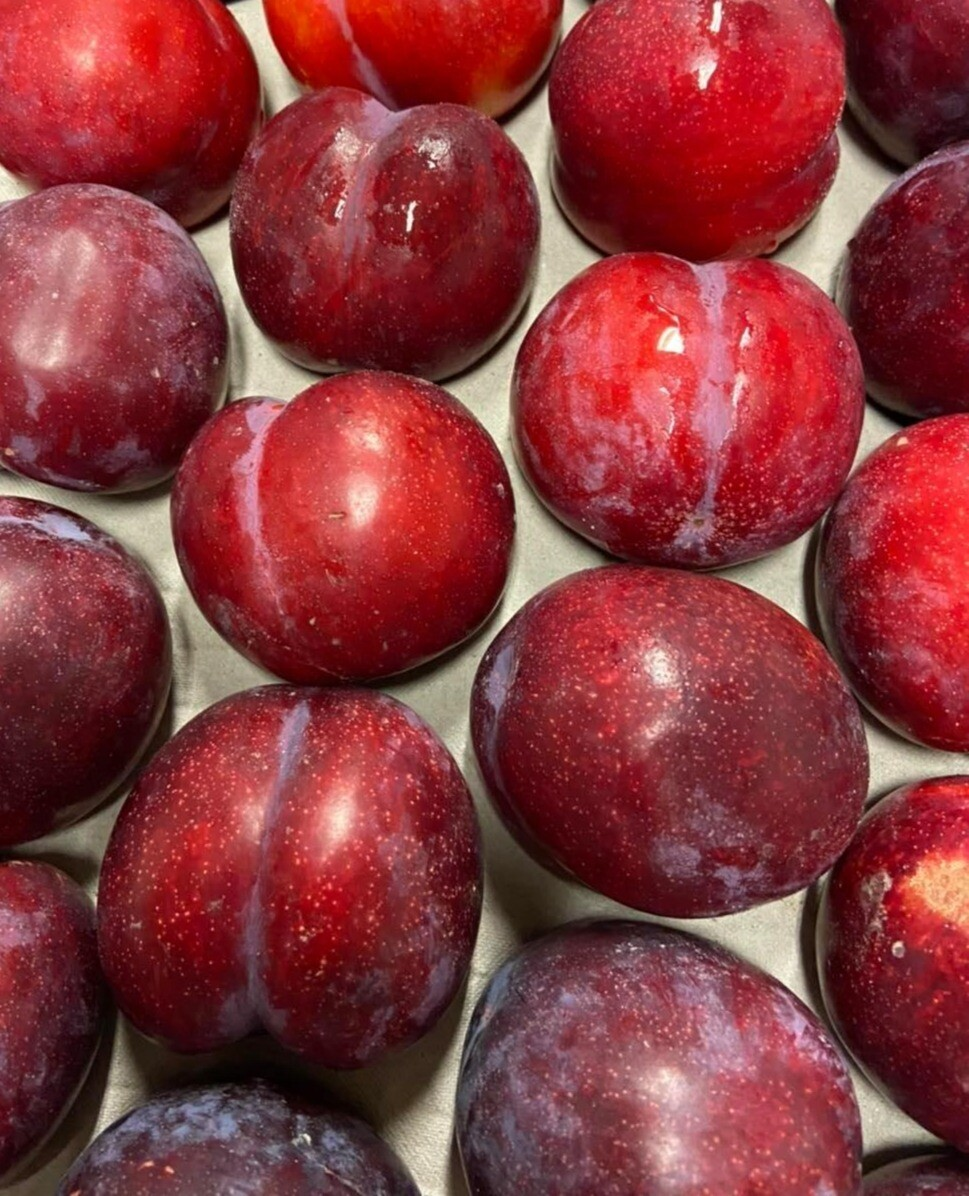 Plums 500g (South Africa)