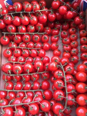 Tomatoes - Best Cherry Tomatoes on the Vine