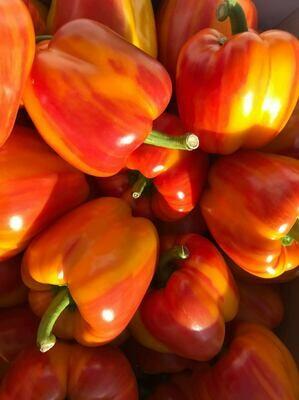 Peppers - Best Dutch