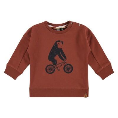 BFC Mahonie trui met aap