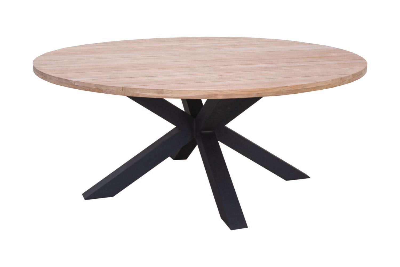 FELINE TABLE