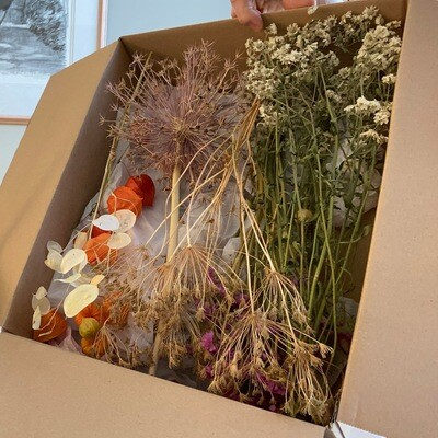 Box of dried flowers all British grown